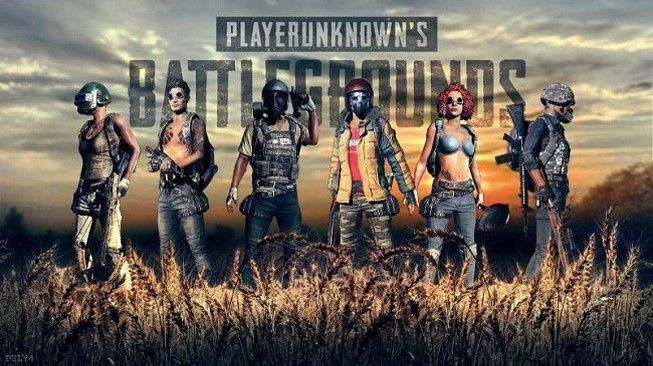 How much PUBG per day income in India