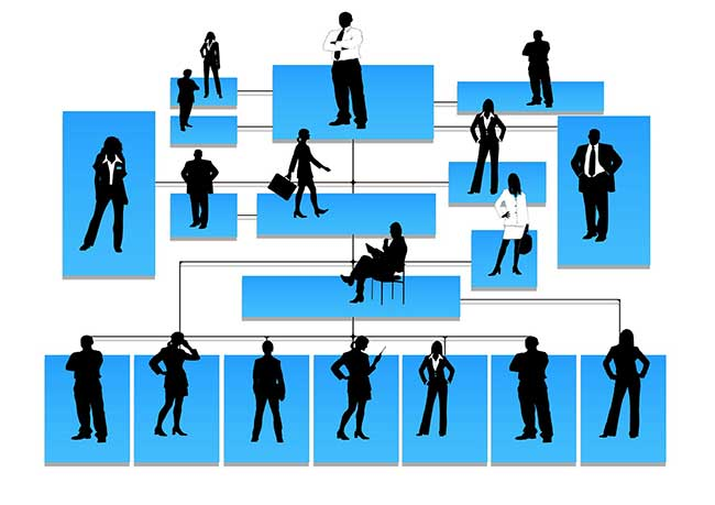 business-structure